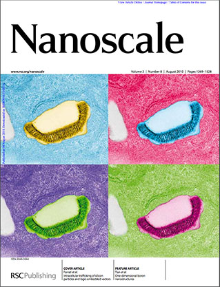 Nanoscale Cover_2